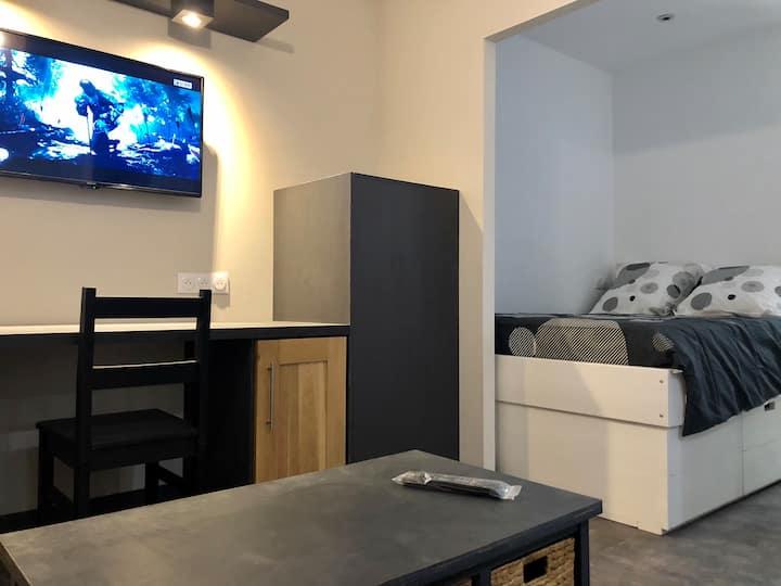 Appartement proche centre ville Albi