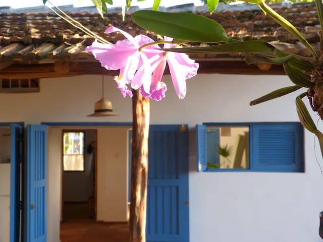 Jardín de Juana