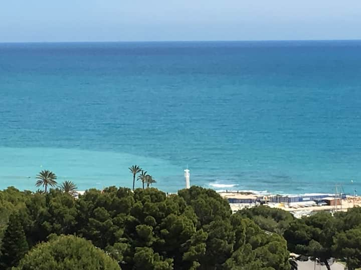 Apartment in Campoamor with seaview