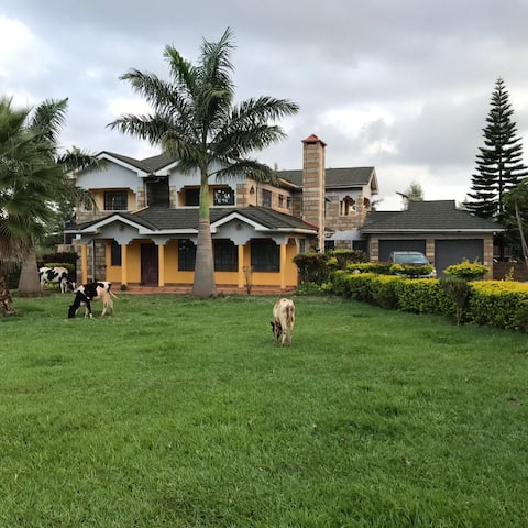 Uniquely Beautiful Farm House