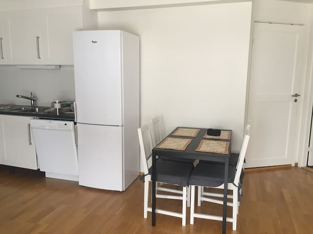 Apartment in Asker - 25 minutes from Oslo