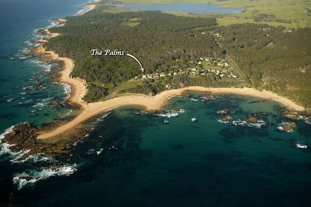 The Palms - Mystery Bay