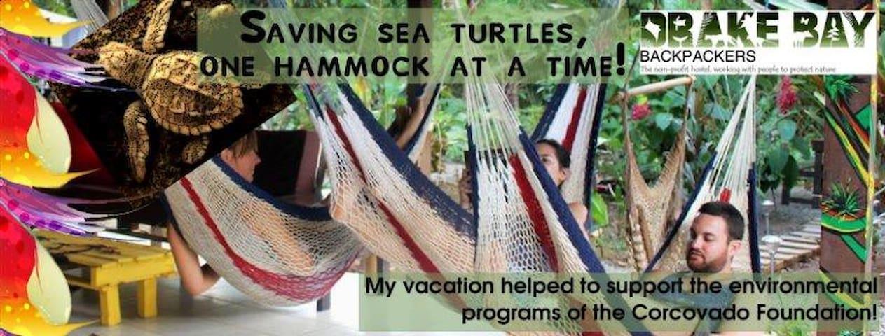 Drake Bay Backpackers - Peninsula  - Internat