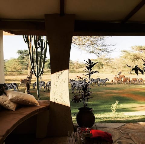 Safari House