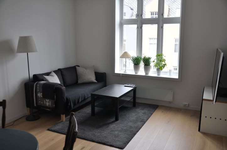 Modern, clean apartment close to Bryggen