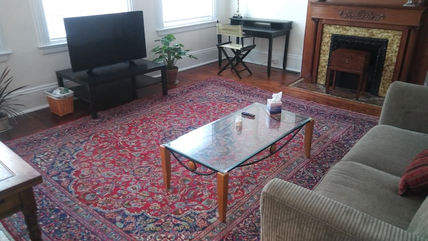Spacious 1 BR Apartment in Mexican War Streets - Pittsburgh - Apartemen