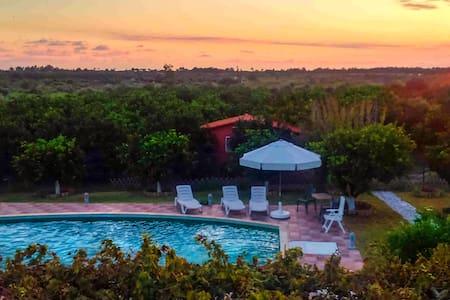 Vineyard villa with swimming pool- 'Ktima Musama' - Kaiafas - 別荘