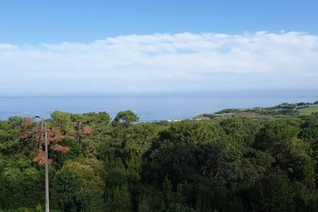 Bidart/ Biarritz. Beaux studio avec belle vue mer