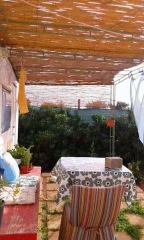 Holiday in the Mediterranean Garden - Lampedusa