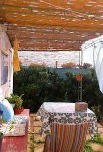 Holiday in the Mediterranean Garden - Lampedusa