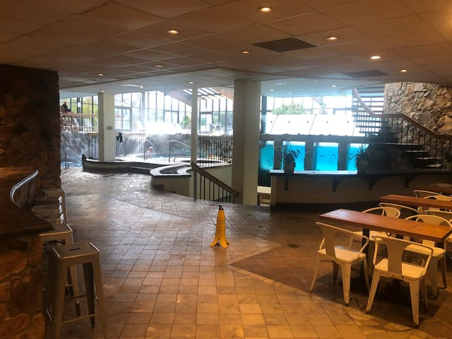 indoor bar, ping pong, jacuzi, Hot tub and cold water plunge