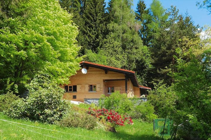 4 star holiday home in Rinchnach