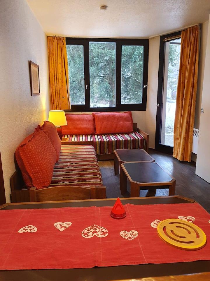 """Sympathique appartement"""" le chamois blanc""""Chamonix"""