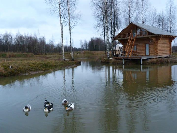 Бревенчатый дом с баней на берегу пруда