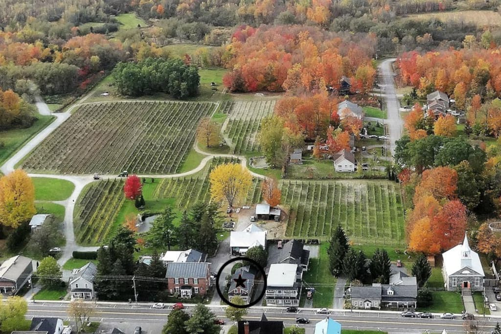 Vue aérienne du vignoble