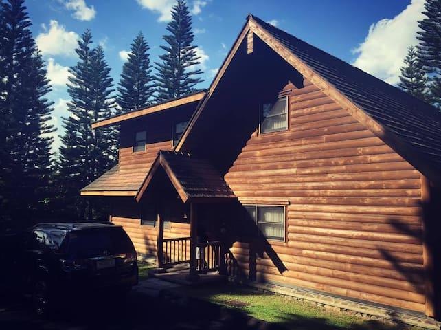 Tagaytay Highlands Log Cabin VIP - PH - Cabane