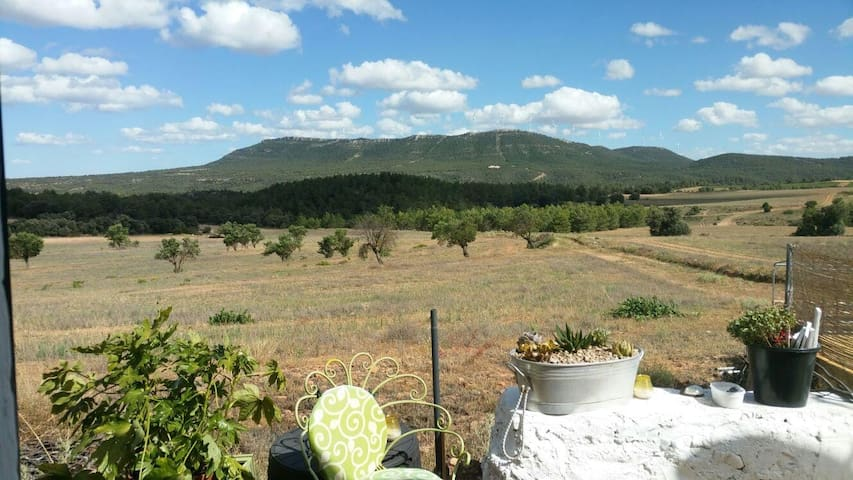 Peaceful  Finca Mariposa,  hosted by Gail & Gary