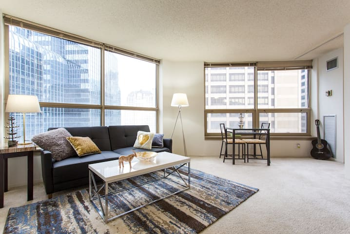 Beautiful Spacious 1 bedroom in heart of downtown - Chicago