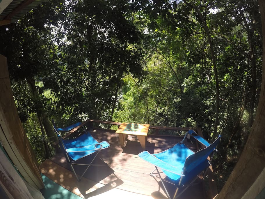 Deck in the trees