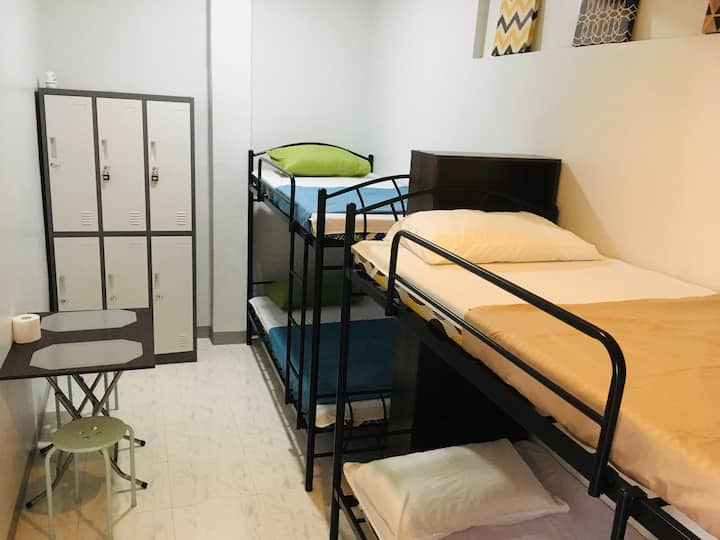 4-Bunk Bed Dorm Room with Breakfast (D)