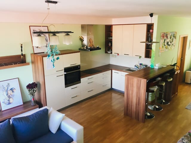 City apartment in south Moravia