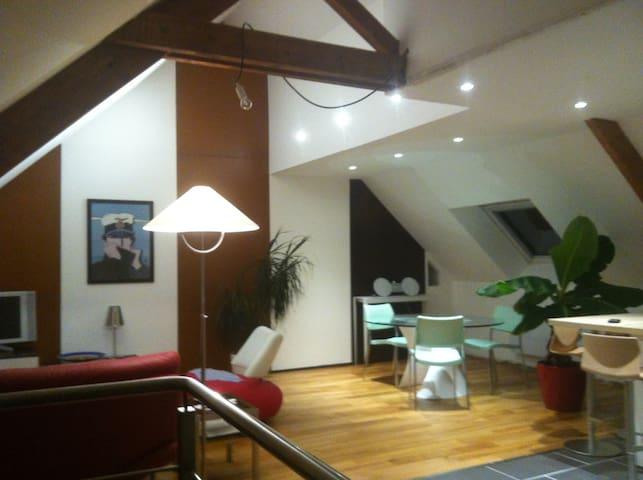 Chambre dans appartement chaleureux et confortable