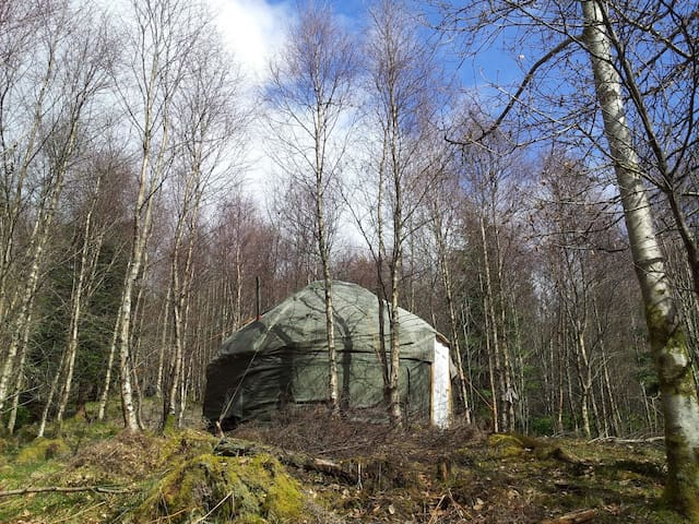 Rustic Yurt in Beautiful Woodland - Brig o'Turk