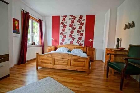 Gemütliche und große Wohnung im idyllischen Harz