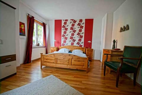Cosy and large apartment in the Harz Mountains