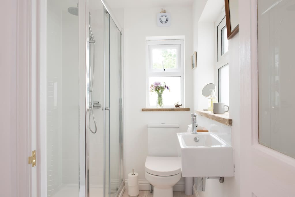 Spacious shower stall and clean modern lines. White washed floor boards throughout the studio flat.