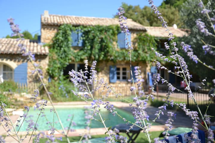 Mas Provençal - Piolenc - Dům