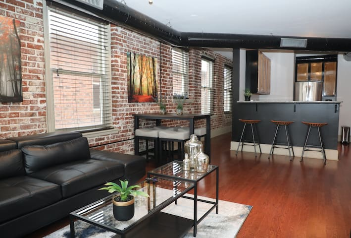Retro-contemporary  2 bedroom downtown apt.