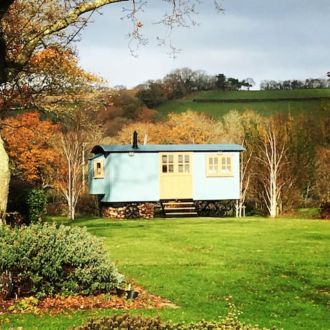 Luxury shepherds hut - glamping at its best - Devon - Pondok