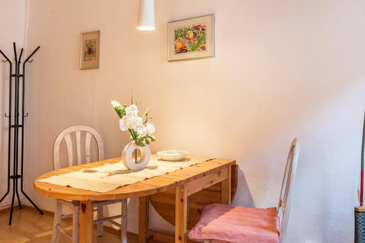 "Charming Studio Apartment ""Ferienwohnung Faden"" in the Centre of Konstanz with Wi-Fi; Parking Available Nearby"