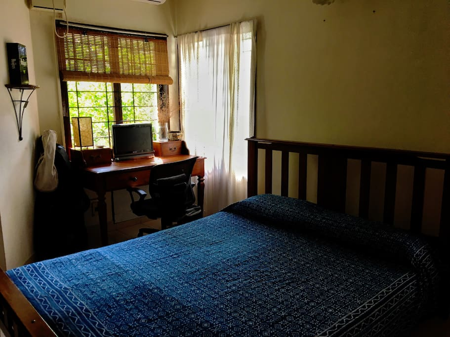 On the right side there's a teak desk with a view of a lime tree peeping in.