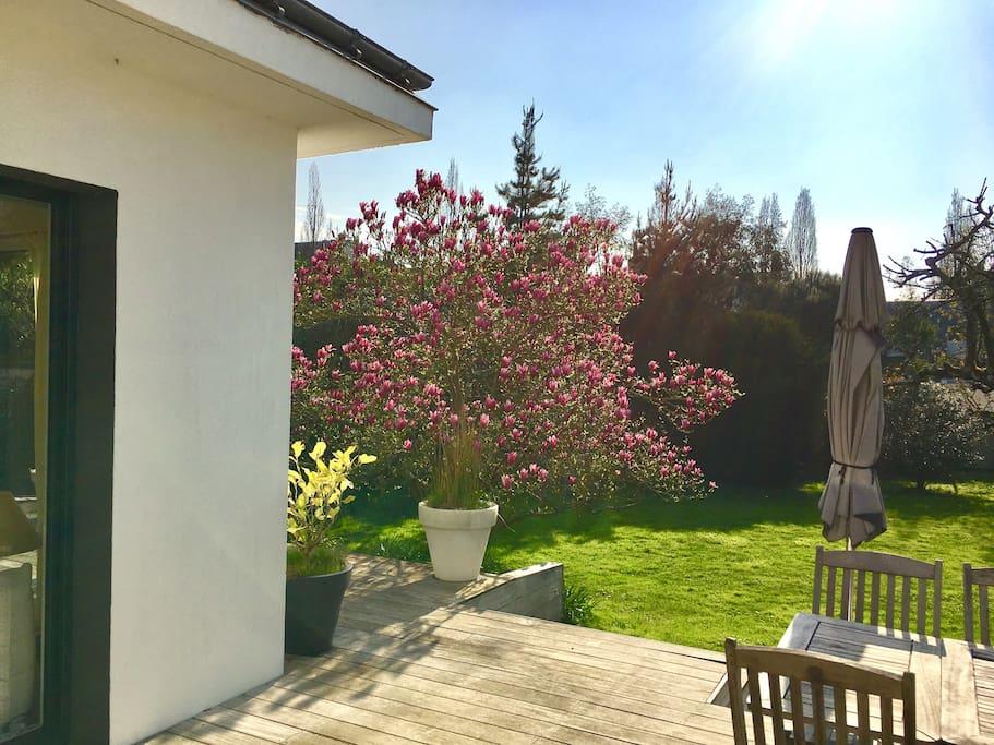 Jardin côté terrasse