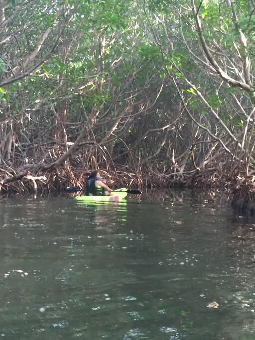La lagunana luminicense queda detra hay kayak disponibles por el mismo precio