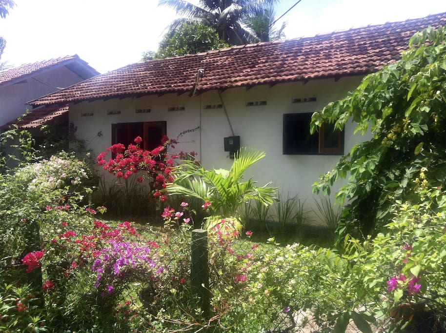 A typical village-style house in Dalupotha, Negombo