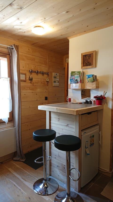 Studio en plein centre de Chamonix