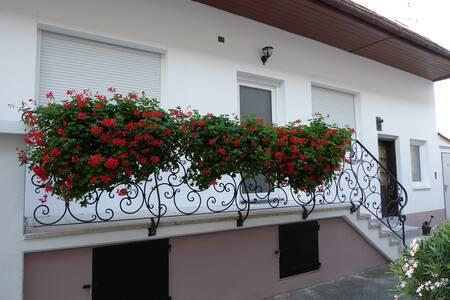 Appartement mit Balkon im Appartementhaus Corinna