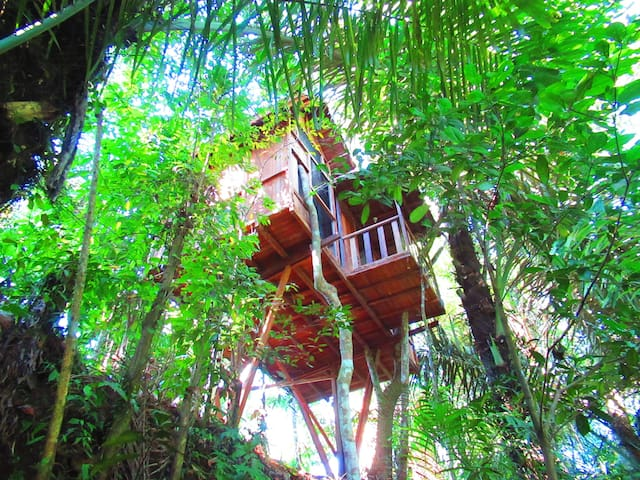 hars garden tree houses/nature power