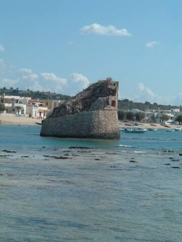 Casa vacanze in Salento a pochi passi dal mare. - Torre Pali - House