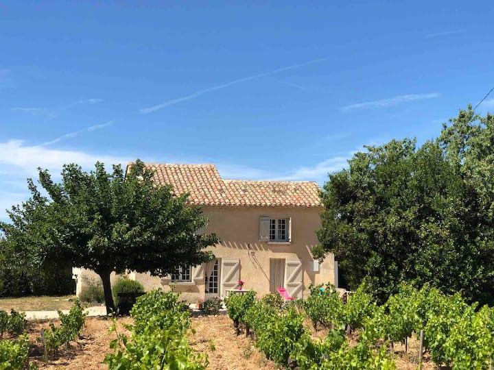 Le Clos du Puit - Savourez la Provence