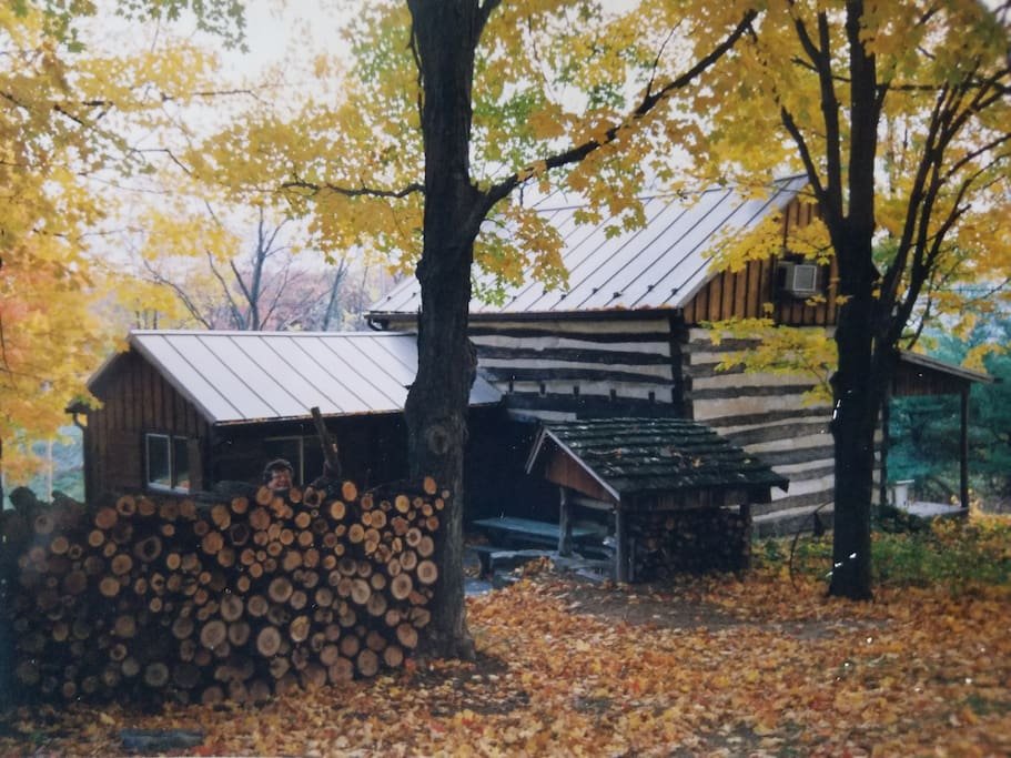Back of the house in Autumn