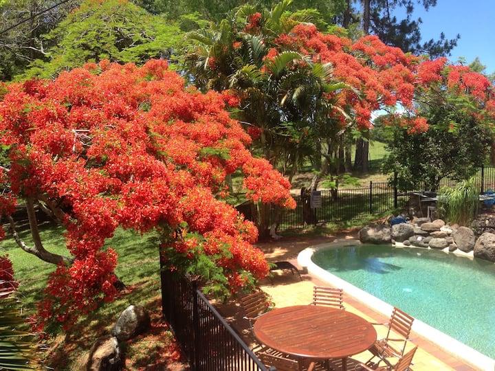 Byron Bay Hinterland House & Pool POCKET PINES