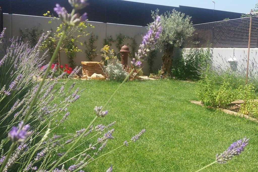 Poesia vino y jardin chill out apartamentos en alquiler for Alojamiento en la rioja espana