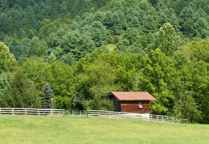 Romantic wooded creek cabin on 100 acre sheep farm