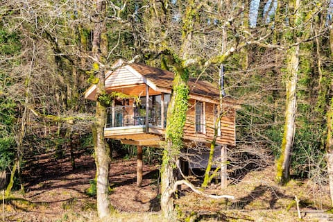 Yeworthy Eco-Treehouse - Off-Grid, Private Retreat