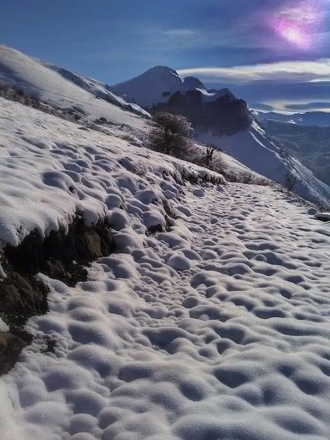 Izar-Ttipia, chambre indépendante en montagne