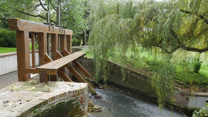 Dernier moulin à eau sur la rivière du liger